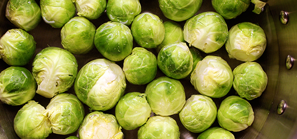 Can Dogs Eat Brussel Sprouts