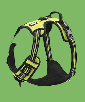Chia's Choice Front Range No Pull Dog Harness