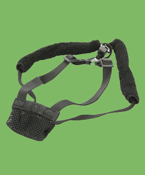 Yup Nylon Non-Pulling Dog Harness